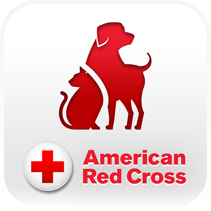 Pet First Aid Awareness Month - April