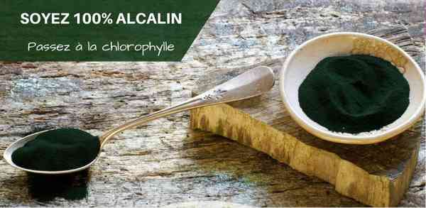 Detox Alcaline : L'art de la Detox au Naturel – Alcalinisez-vous et retrouvez Vitalité-Minceur…