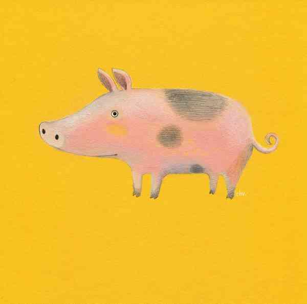 Illustration FARM | Piggy