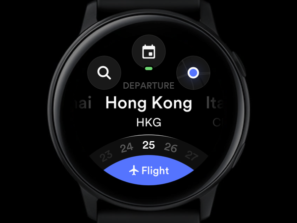 Flight Homepage Watch Version