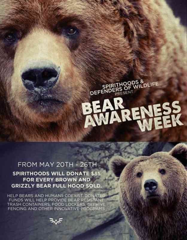 Bear Awareness Week - 3rd Week May
