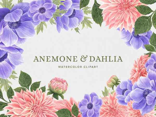 Anemone & Dahlia Watercolor Flowers Clipart