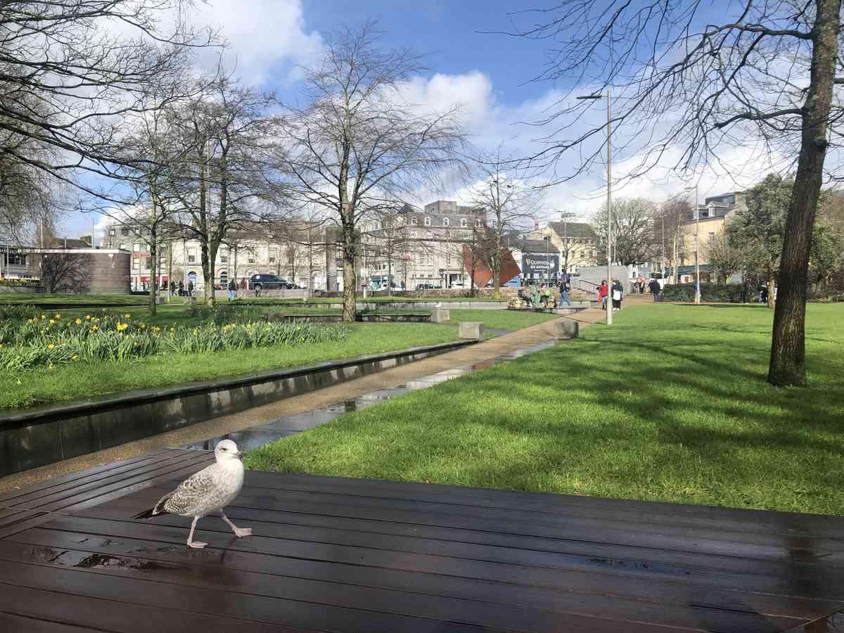 04. Galway to Surbiton