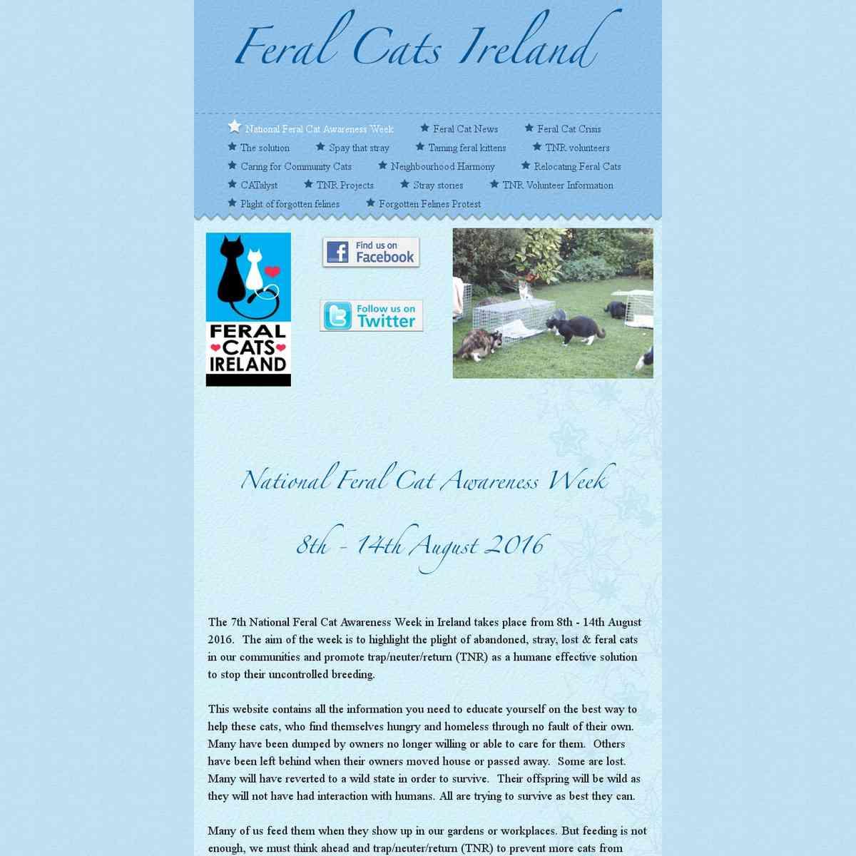 Feral Cats Ireland