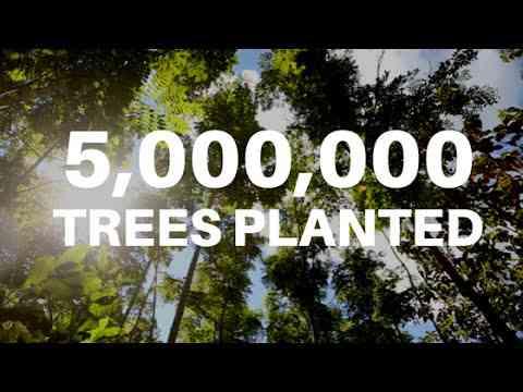 5 million trees