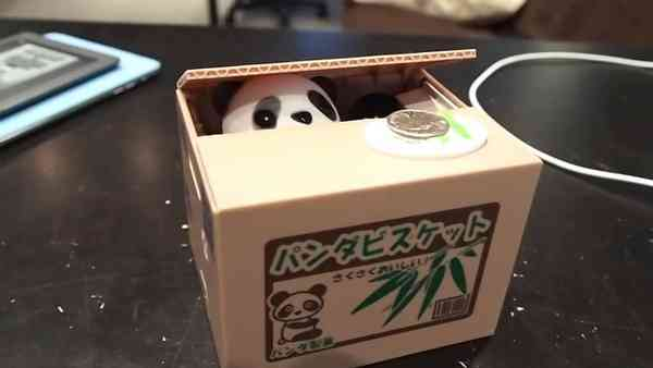 Panda Saving Pot Coin Bank for Coin Collection