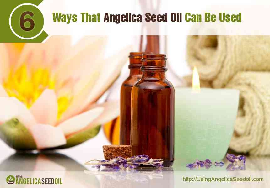 Benefits Of Angelica Seed Oil To Health