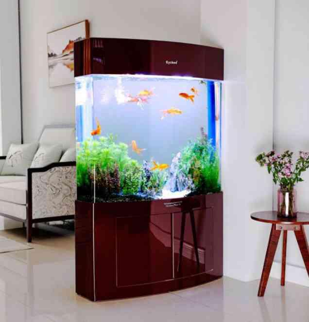 Giá các loại bể cá cảnh - OpenLearning