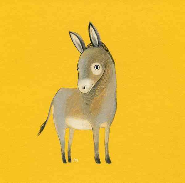 Illustration FARM | Donkey