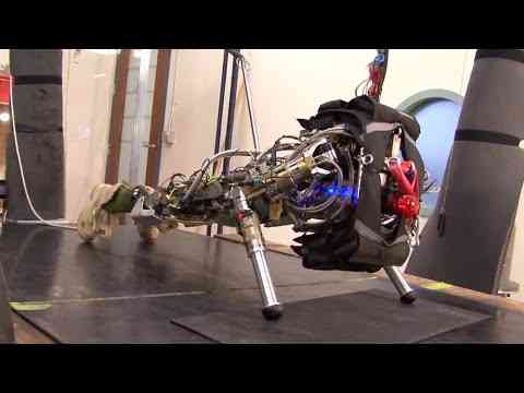 Push It to The Limit Petman, Atlas Boston Dynamics