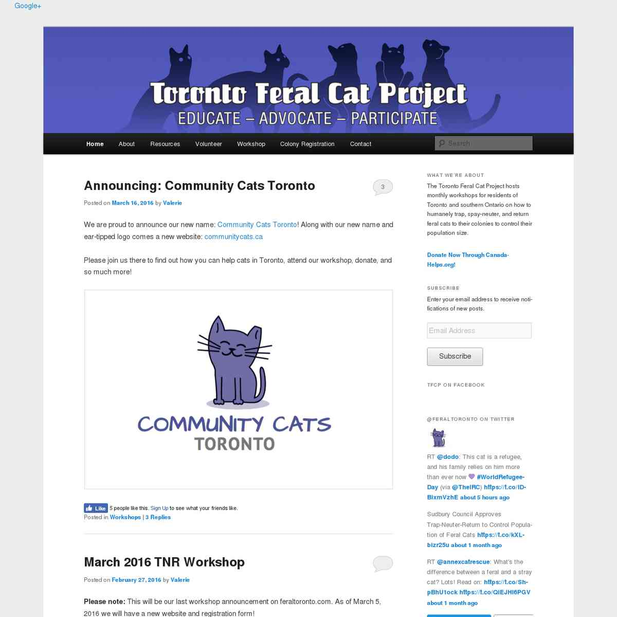 Toronto Feral Cat Project