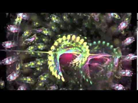 Dakha Brakha - Buvayte Zdorovi (Dzo live remix) 127 bpm - YouTube