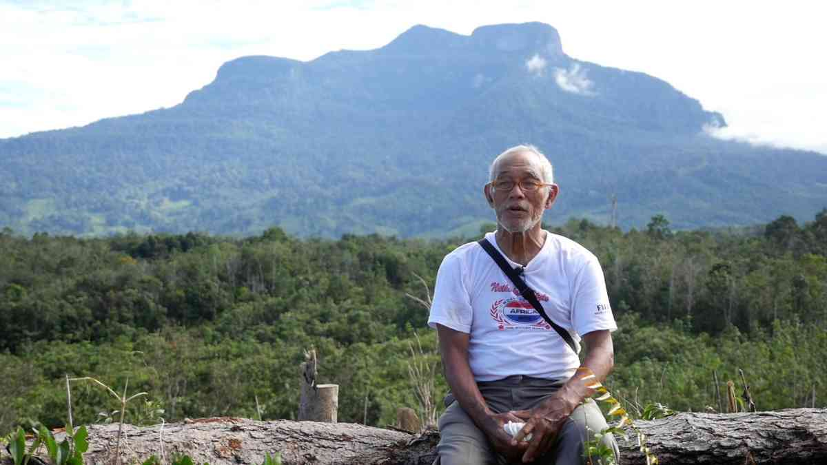 Interview with Piet, tree planting partner in Indonesia EN