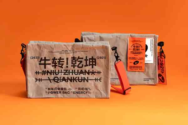 2021 ZhuanZhuan New Year Gift Box   Bag
