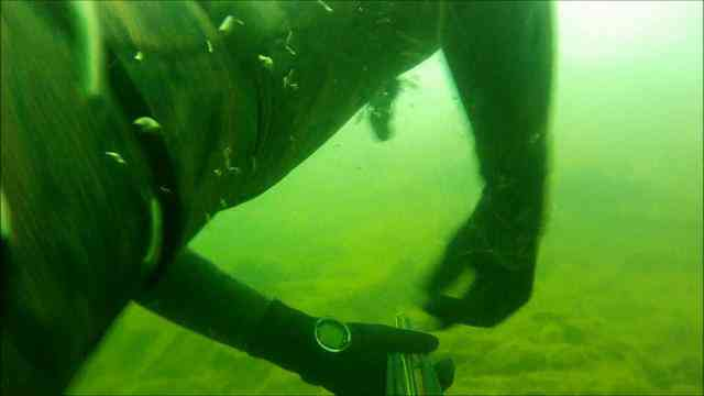 Spearfishing Flaming Gorge