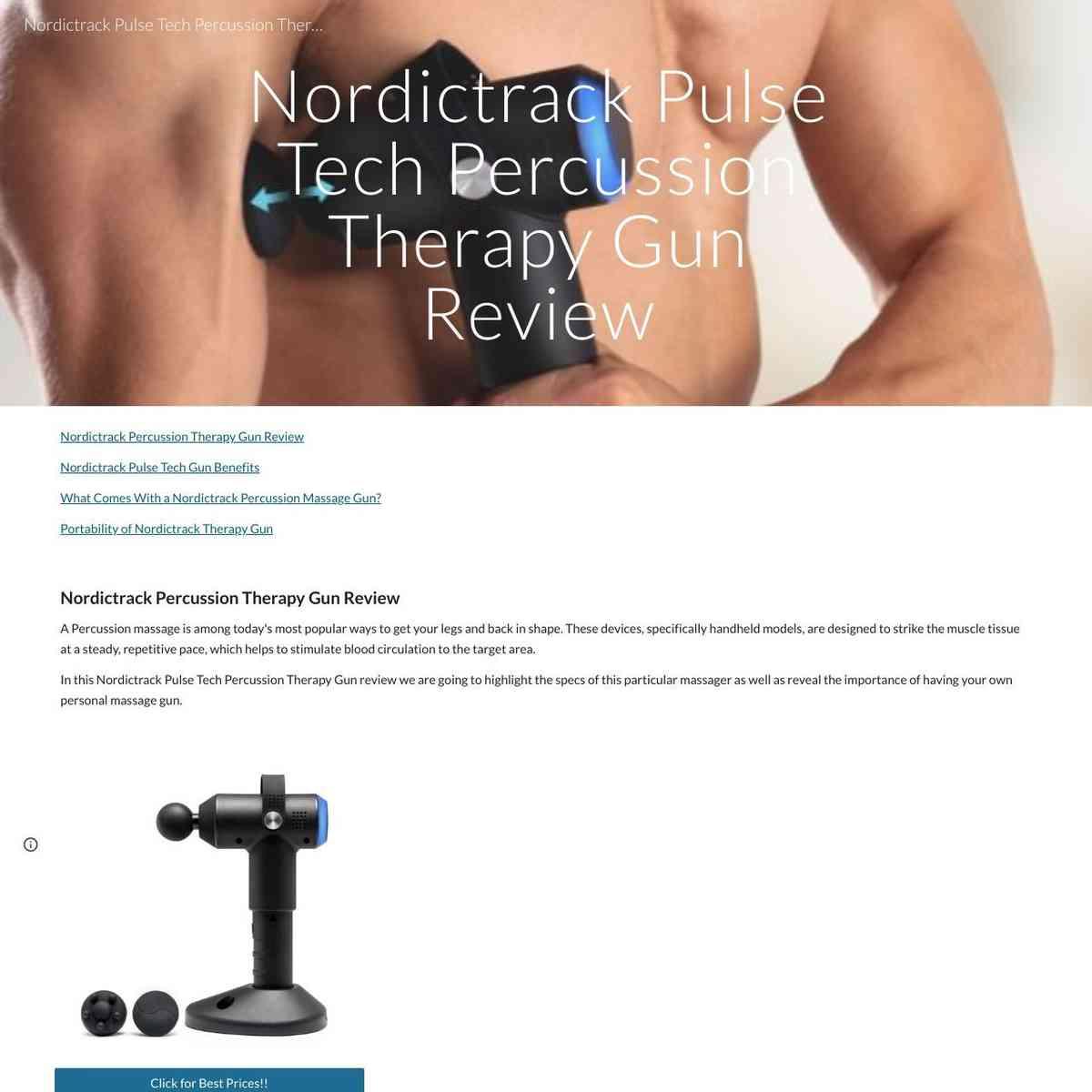 Nordic Track Pulse Tech Percussion Massager