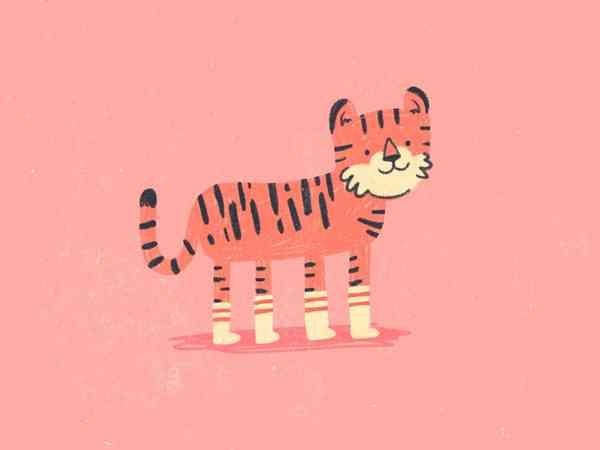Tiger in Socks