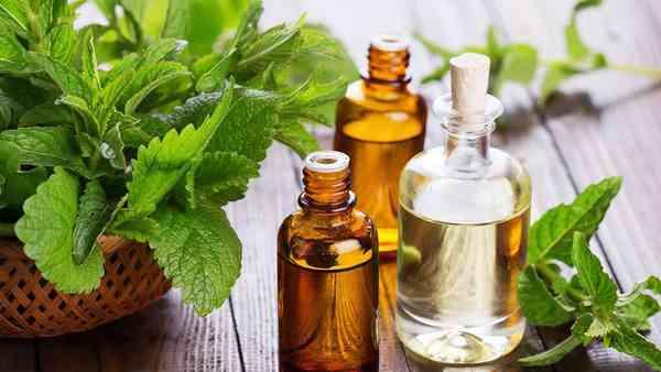 Les huiles essentielles contre-attaquent - Egalite et Réconciliation