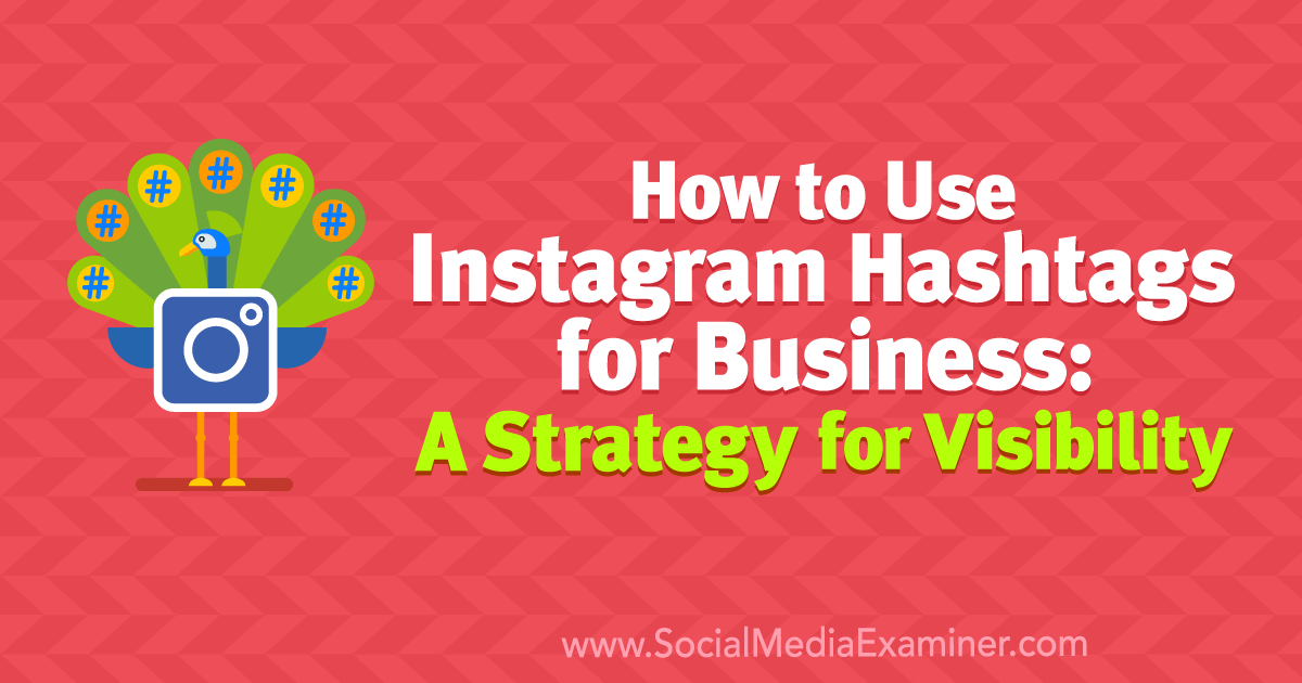 How to Use Instagram Hashtags for Business: A Strategy for Visibility : Social Media Examiner