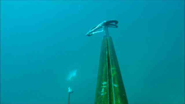La Paz, Baja spearfishing trip 3/2011