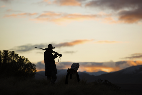 Hunt for the Wilderpeople - Garth Jones - Medium