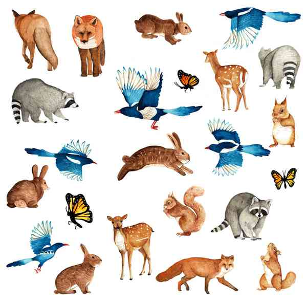 Chobani x Aitch   Animals