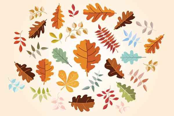 $ Leaf Elements