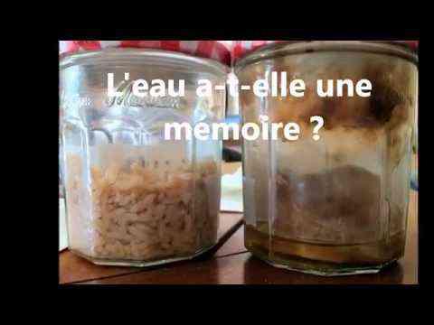 Expérience du riz   Mémoire de l'Eau!