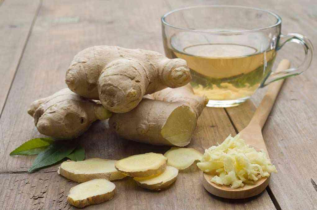 Ingefær | Ingefærshots | Shot, drik og te | Gurkemeje og citron | Opskrifter | Plante | Virkning …