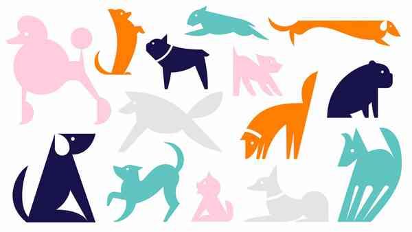 Finn   Dogs