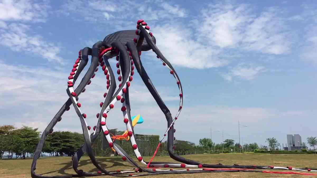 Giant Octopus Kite - YouTube