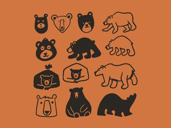 Bear 🐻
