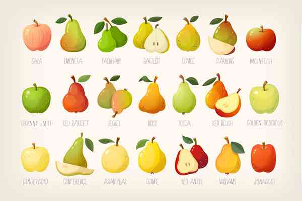 $ Pears and apples