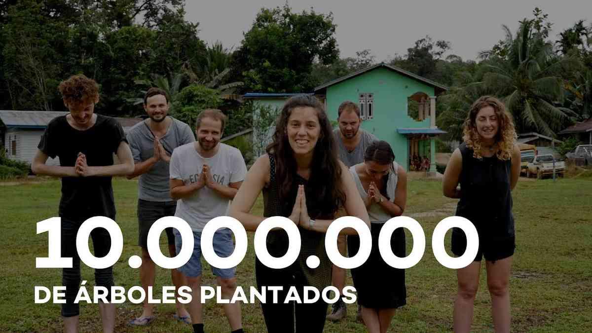 10 milliones des árboles plantados con Ecosia