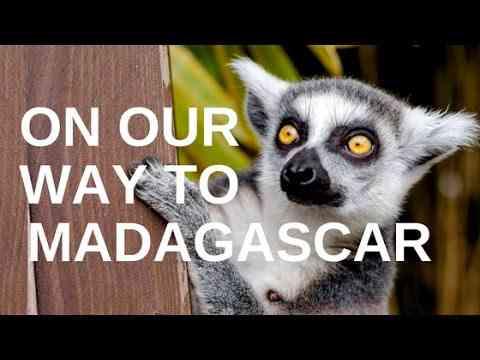 Ecosia visiting planting sites in Madagascar