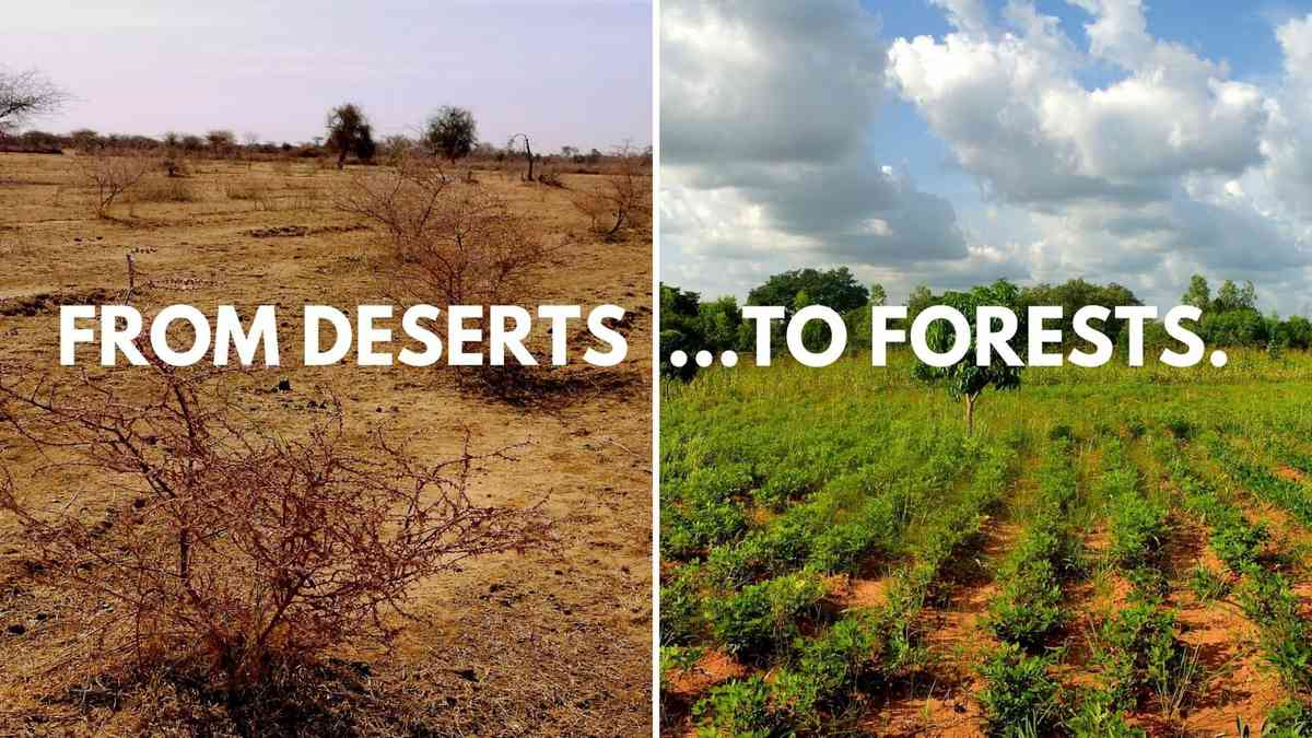 Ecosia's planting sites in Burkina Faso EN