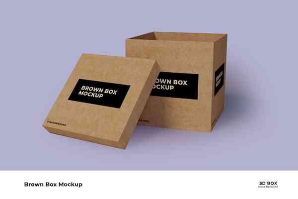 Brown Box Mockup
