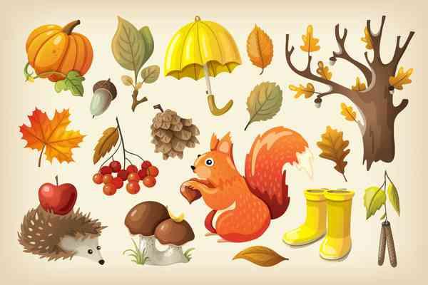 $ Cozy Colorful Autumn Set