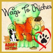 Wags to Riches PA