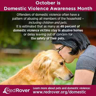 D.V. Awareness Month - October