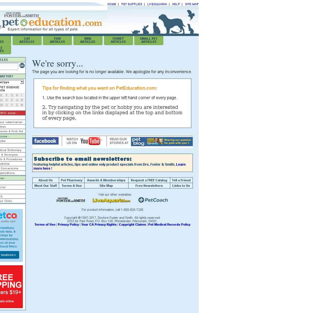 Pet Education - Senior Pet Health Care