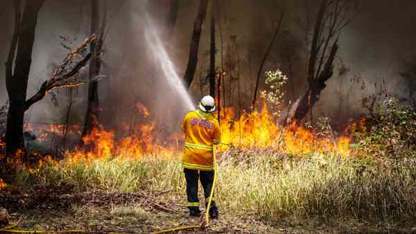 News; NSW, Victoria fires: RFS, CFA blame drop in volunteer firefighter numbers on 'bullying cultur…