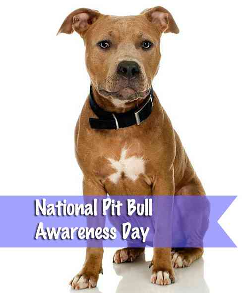 Nat'l Pit Bull Awareness Day - Oct 28