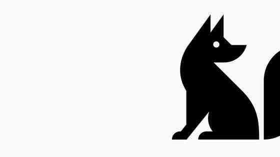 Bobby Solomon: The Fox Is Black
