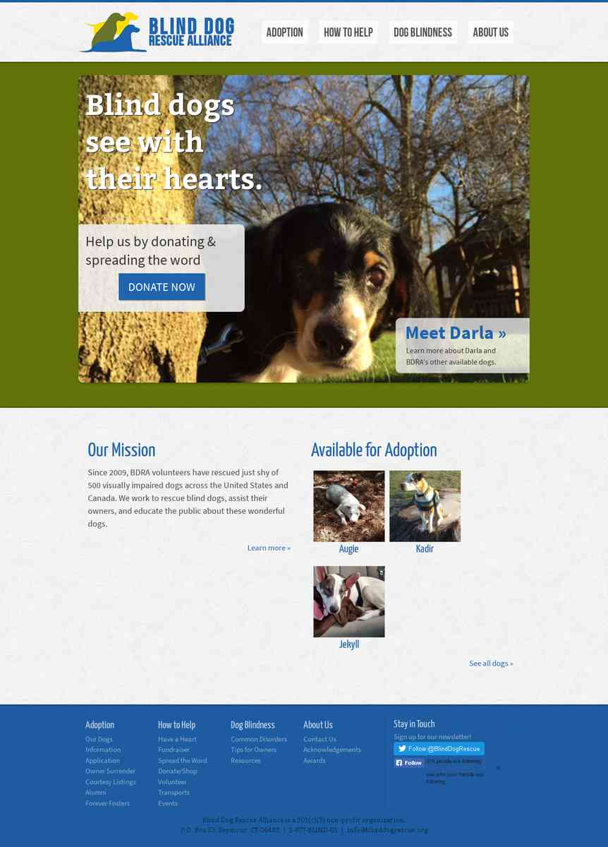Blind Dog Rescue Alliance (CT)