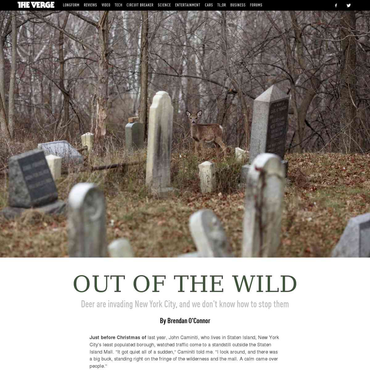 Out of the wild | The Verge