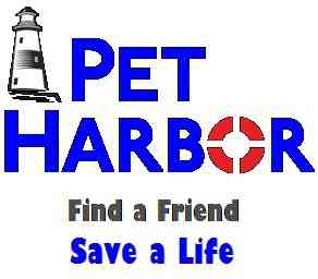 Pet Harbor - Search Engine
