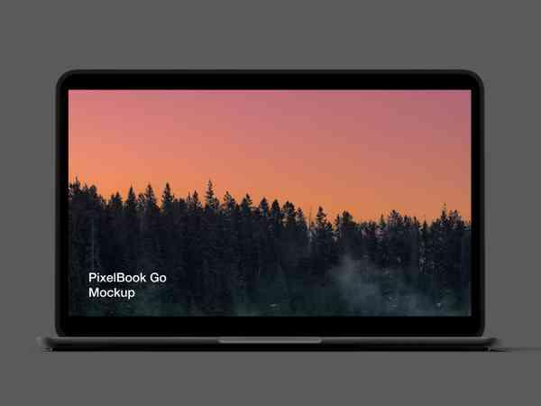 PixelBook Go Mockup