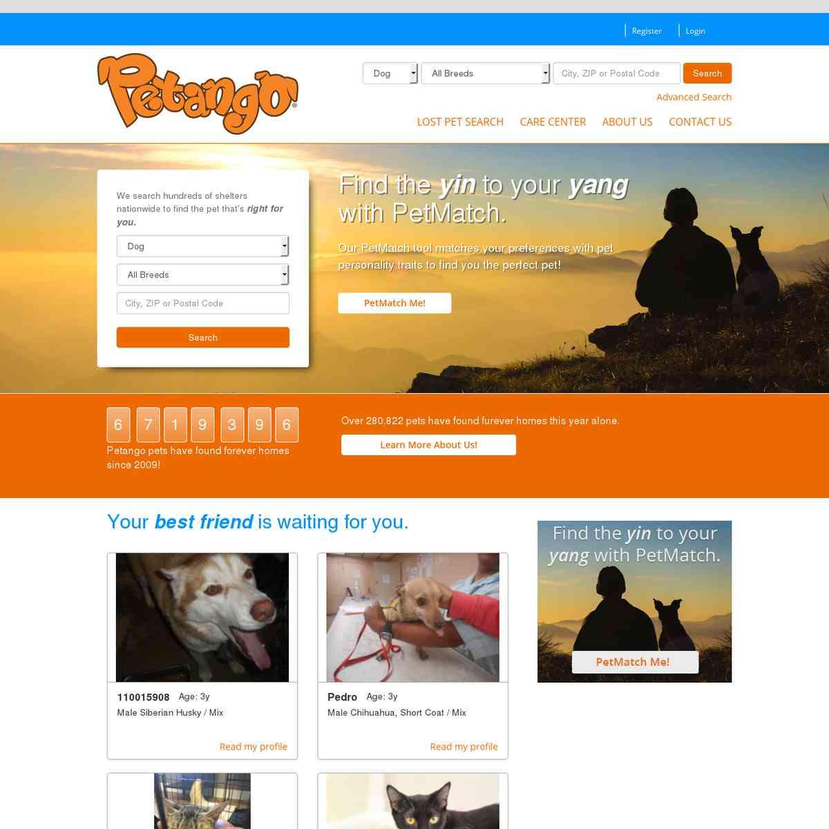 Petango - Search Engine