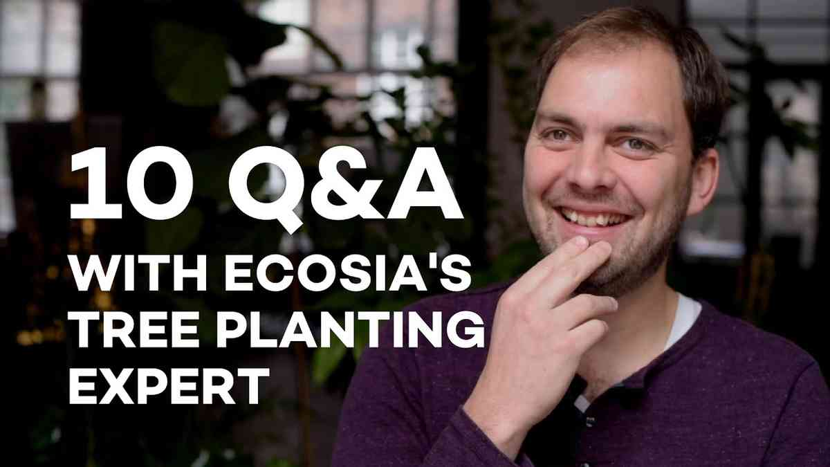 10 Q&A with Pieter van Midwoud, Ecosia's Tree Planting Officer EN